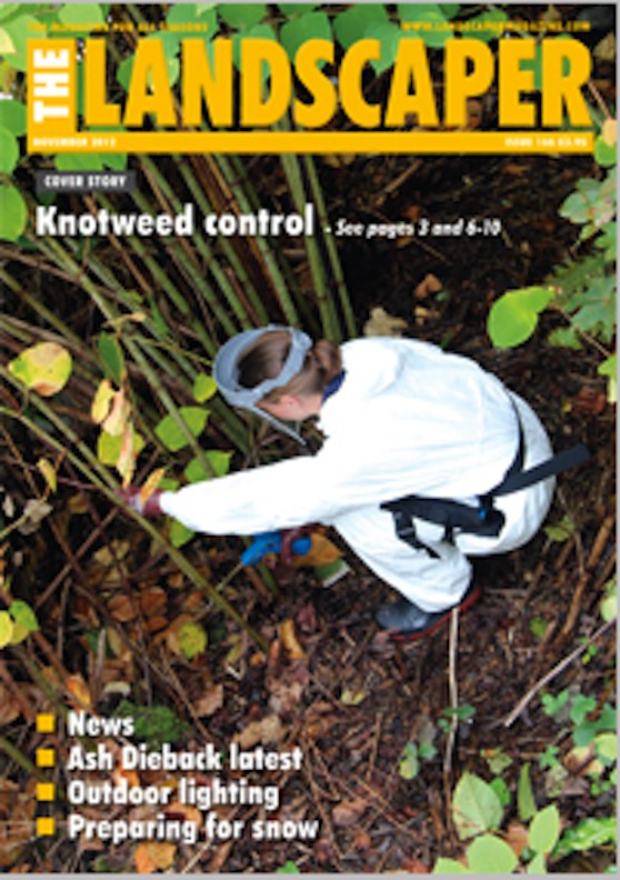 Day of the Knotweed